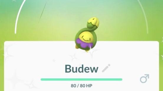 Budew kan nu hatches fra æg :OPDATERET: